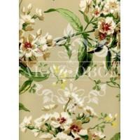 Обои Ashford House Flowers S.E. CF6308