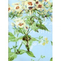 Обои Ashford House Flowers S.E. CF6309