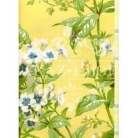 Обои Ashford House Flowers S.E. CF6310