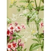 Обои Ashford House Flowers S.E. CF6312