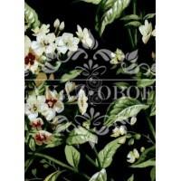 Обои Ashford House Flowers S.E. CF6313